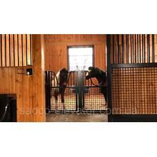 Технологічні секції групового утримування коней