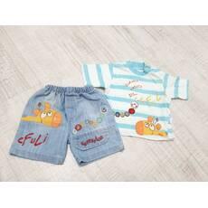 Літній комплект (шорти і футболка)
