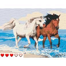 STK Картина по номерах Пари коней, кольорове полотно, 40*50 см, без коробки, ТМ Barvi  ЛАК