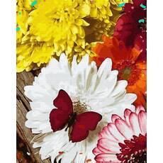 STK Картина по номерам. Бабочка на цветах, 40*50 см, Brushme в коробке