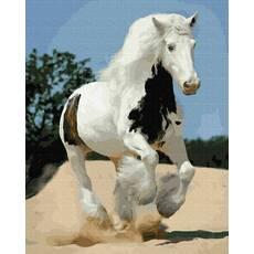 STK Картина по номерам Белый конь  без коробки, Никитошка, 40*50 см
