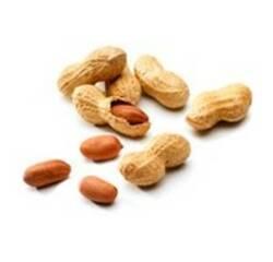 Вітамін Н2 (біотин)