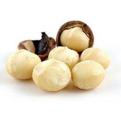 Макадамия (австралийский орех)
