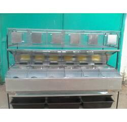 Клетка маточная откормочная, пристенная, модифицированная КМОП-2, купить в Одессе