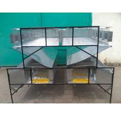 Клетка маточная откормочная, островная КМОО-1, купить в Полтаве