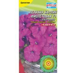 Петуния Карлик суперранний Фиолетовый 10 драже