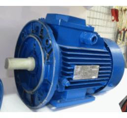 Електродвигун  АИР100 L6 2.2 квт на1000