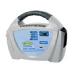Зарядне для акумуляторів Ring RECB206