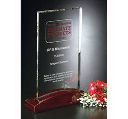 Стеклянная награда на деревянной подставке арт. PG046