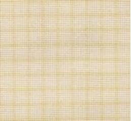 Канва AIDA Zweigart №16 разлінеенная (64кл. / 10 см) Ecru, ширина 150см