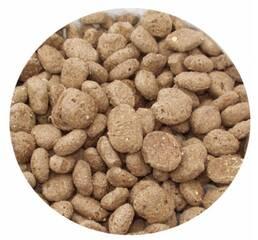 Екструдовані корми для котів і собак