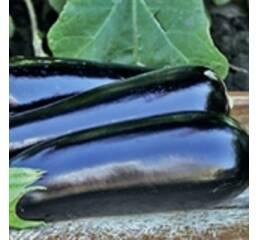 Семена баклажана Аннет F1