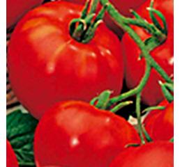 Семена томата Волгоградский 5/95 1 гр. Элитный ряд