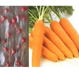 семена на ленте Морковь Талисман (ЕМР-39) по 5 м/уп