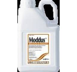 Регулятор росту рослин Моддус