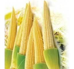 Кукурудза бебі корн за 1 г