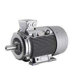 Электродвигатель асинхронный Siemens 1LA7166-6AA10-Z D22