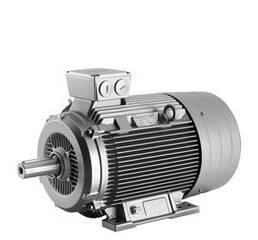 Электродвигатель асинхронный Siemens 1LA7164-2AA10-Z D22