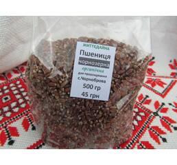 Пшениця чорнозерна органічна для пророщування купити в Житомирі