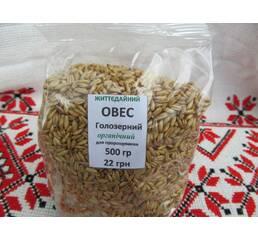 Овес голозерний зерно для пророщування органічне купити недорого