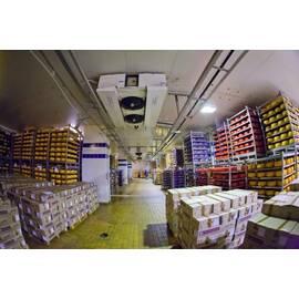 Строительство холодильных складов для молокозаводов