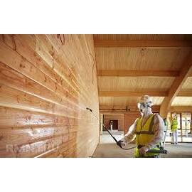 Боротьба зі шкідниками деревини