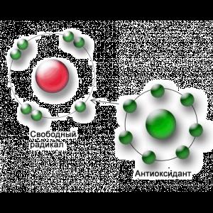 Антиоксиданти натуральні