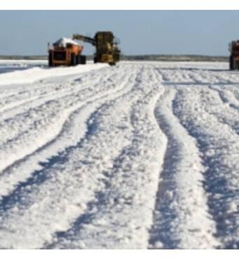Покупайте эффективную соль для промышленной переработки по низкой цене!