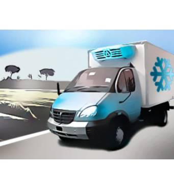 Перевозка грузов рефрижераторами: достойный уровень доставки