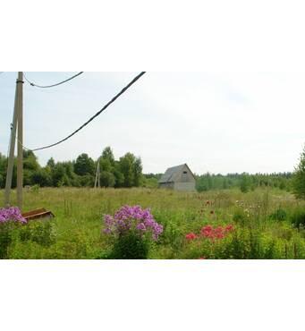 Сдается земельный участок в РФ под крестьянско-фермерское хозяйство 20 гектаров