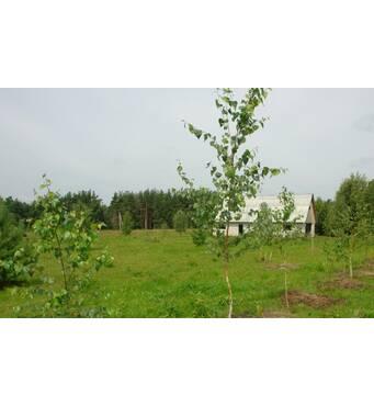Продается земля в Калужской области (Россия)