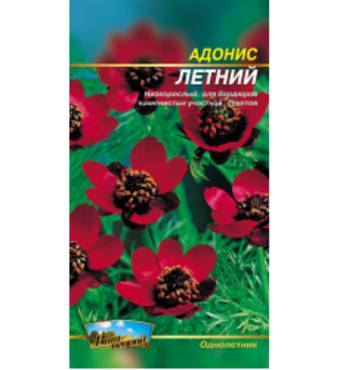 Насіння квітів профупаковка купити за вигідною ціною