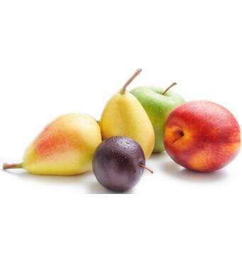 Недорого купить зимние сорта яблок, груши, сливы и абрикосы