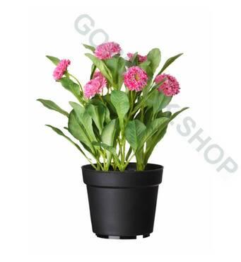 Купити квіткові горщики для розсади у великій кількості