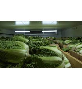 Купити холодильні установки для овочесховищ