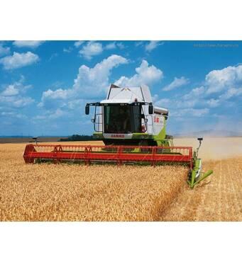Замовляйте послуги зернозбиральних комбайнівТернопіль