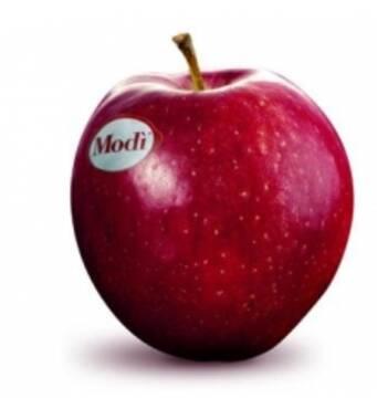 У продажі яблука сорту Моди!