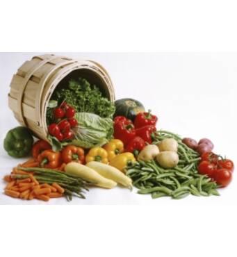 Семена овощей в розницу и оптом