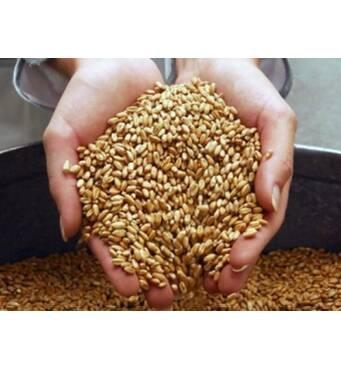 Побутова дробарка зерна - ідеальний корм для домашніх тварин
