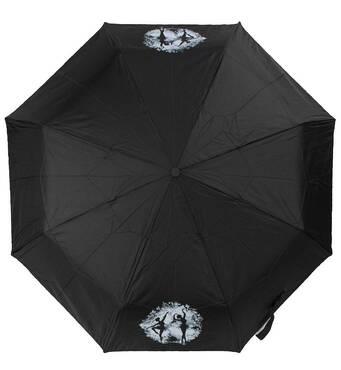TRC Складной зонт ArtRain Зонт женский механический ART RAIN ZAR3511-11