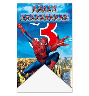 """Гірлянда з прапорців """"З Вдень Народження"""" людина павук"""