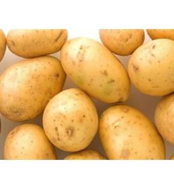 """Картофель сорт """"Ривьера"""" сетка 5кг."""