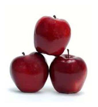 Саженец яблони Виста Белла