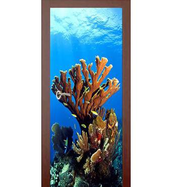 3D двери Красный коралл 9300, 60х200 см