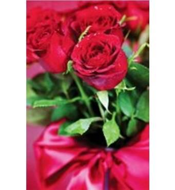 """Пакет для подарунка великий вертикальний """"Роза на стеблі"""" 25х37 см   (6 шт/уп)"""