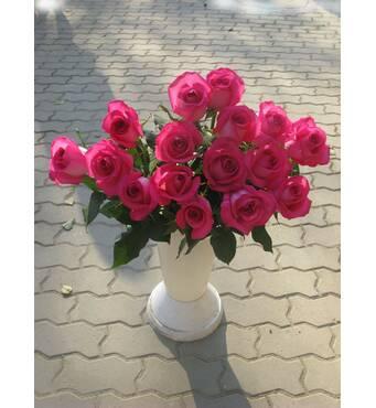 Саджанці чайно-гібридних троянд Топаз