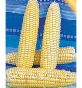 Семена кукурузы сахарной Русалка