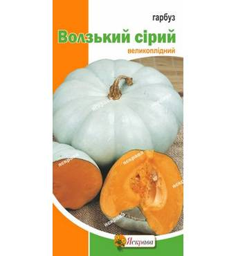 Насіння гарбуза сорт Волзька сіра, 2 гр