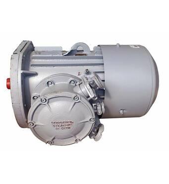Электродвигатели асинхронные взрывозащищенные серии АИУМ 225 М 4, АИУМ 225 SA 4, АИУМ 225 SB 4, АИУМ 225 L4