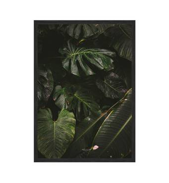 """Постер """"Green leaves"""" без скла 297x420 мм в чорній  рамці"""